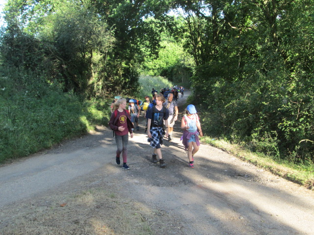 District Mid-Summer Hike & Basher Camp