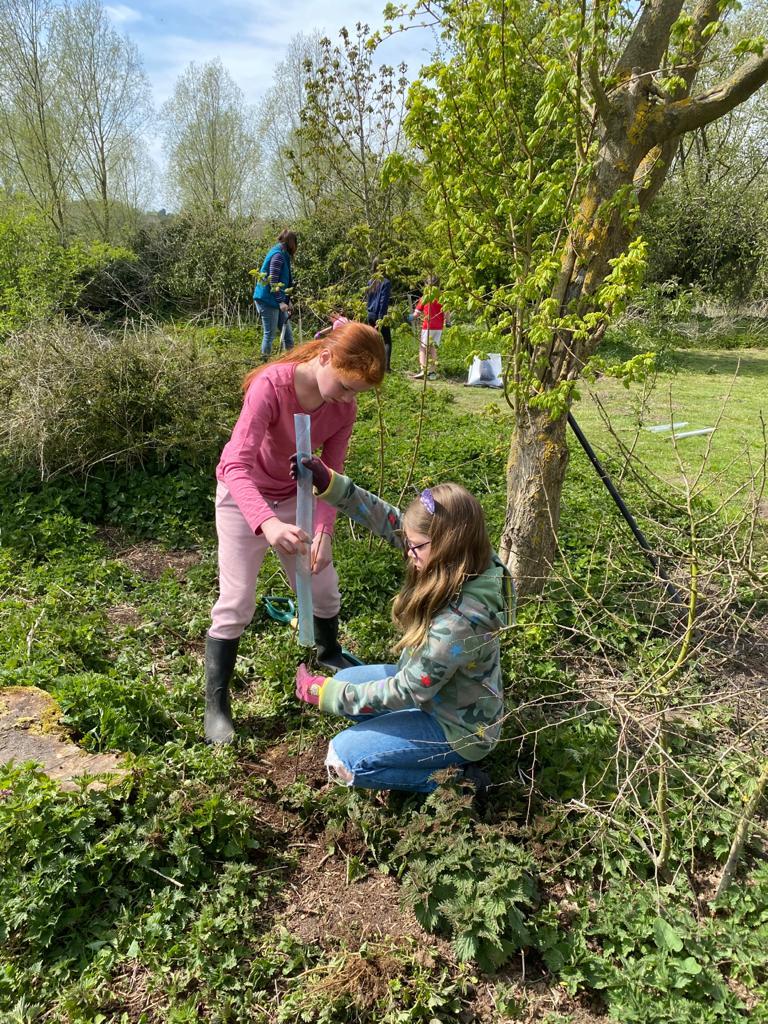 Tree Planting – Camp Site Area, Saturday 24th April 2021